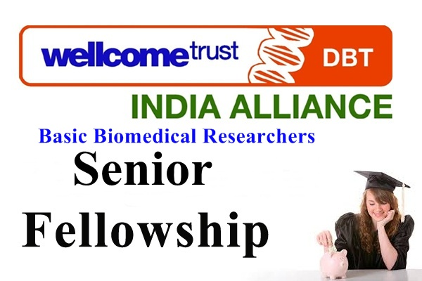 Senior Scholarships for Basic Biomedical Researchers
