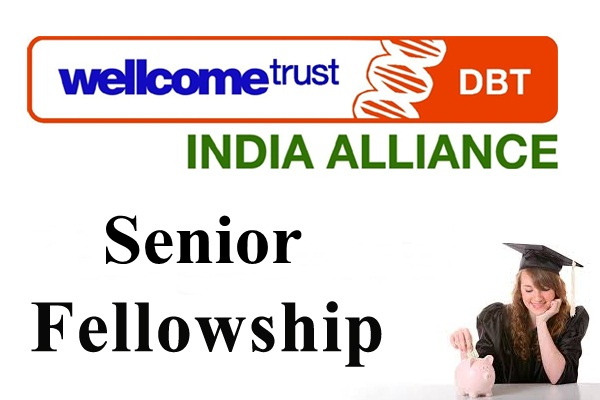 Senior Scholarships for Clinicians and Public Health Researchers